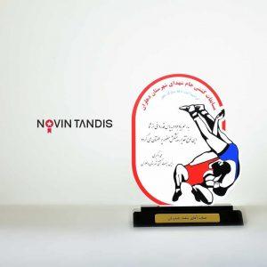 تندیس مسابقات کشتی جام شهدای دهلران - نمونه تندیس - نمونه کار تندیس - ساخت تندیس - طراحی تندیس - قیمت تندیس - تندیس - نوین تندیس