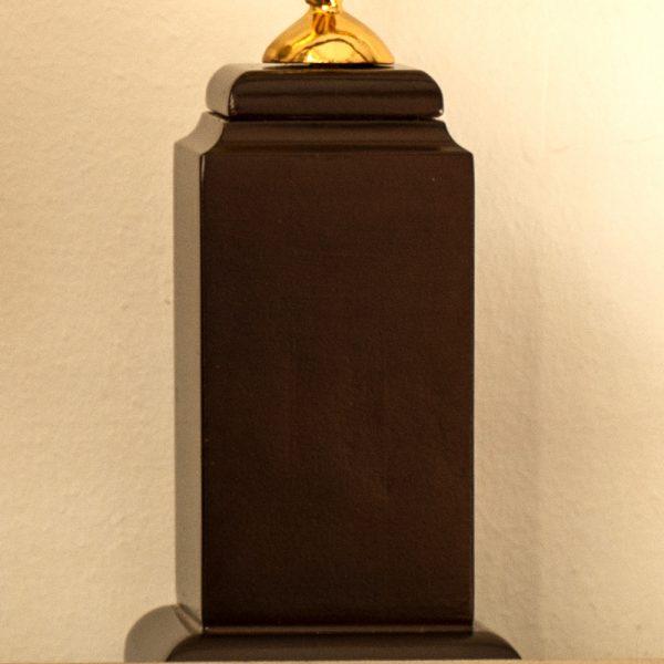تندیس ستاره حجمی با جعبه