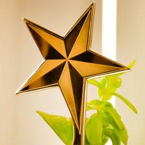 تندیس ستاره واتر جِت